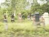 ベトナムの墓石、霊廟