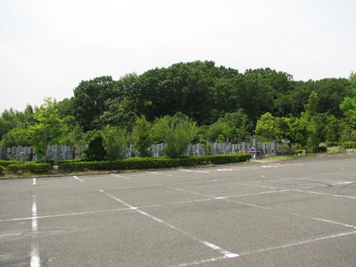 みどりが丘公園の6月の緑